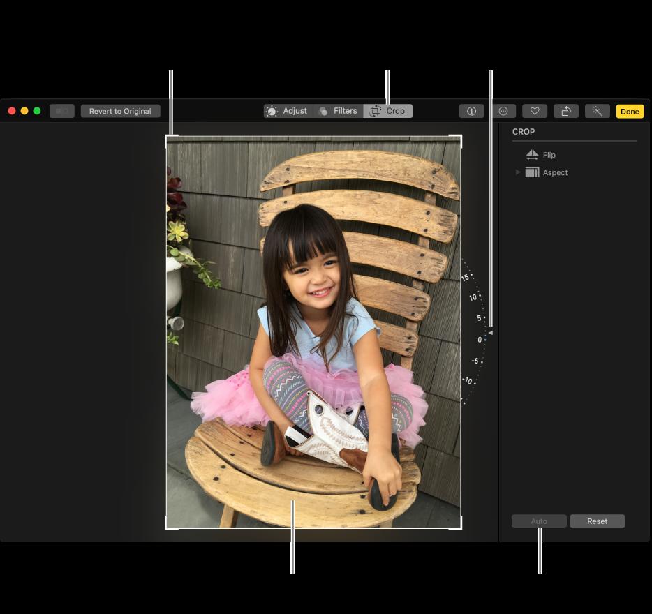 หน้าต่างที่แสดงรูปภาพที่ใช้ตัวเลือกครอบตัดและทำให้ตรง