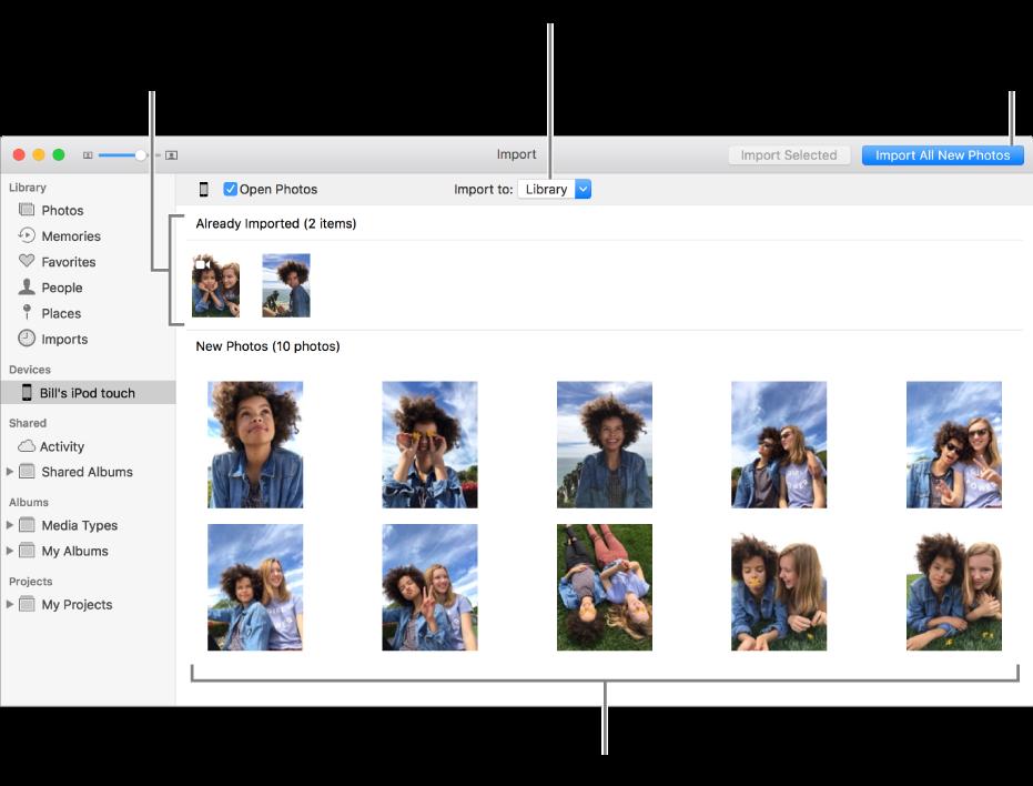 您已從裝置輸入的照片會顯示在面板最上方;新照片位於底部。 最上方中間是「輸入到」彈出式選單。 「輸入所有新照片」按鈕位於右上角。