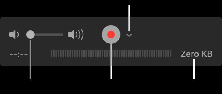 Els controls de gravació, inclosos el control de volum, el botó Gravar i el menú desplegable Opcions.