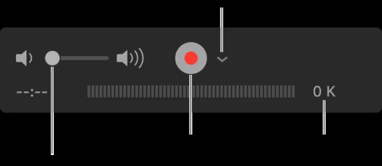 Reglagen för inspelning, bl.a. volymreglaget, inspelningsknappen och alternativpopupmenyn.