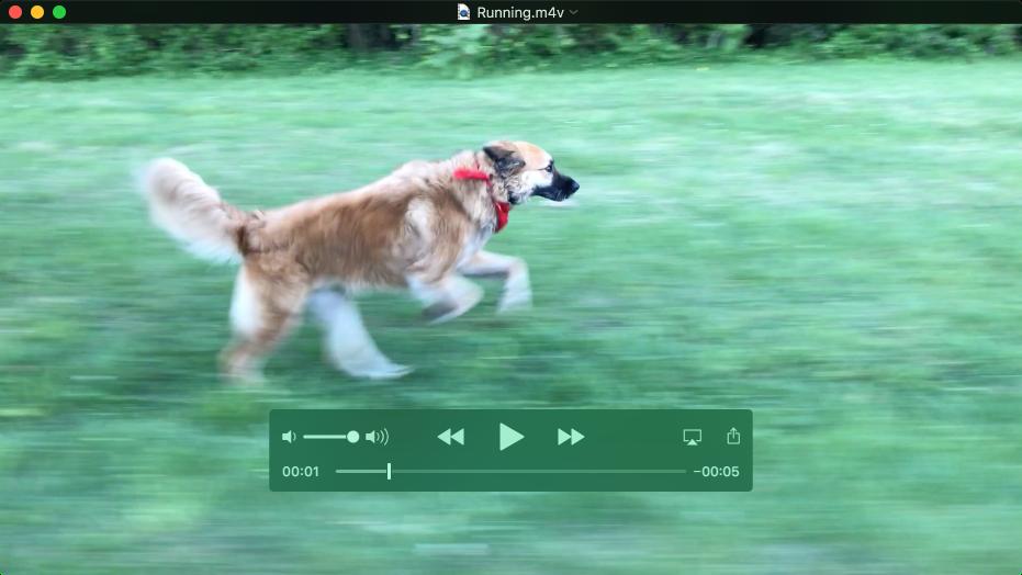 หน้าต่าง QuickTime Player ซึ่งกำลังเล่นภาพยนตร์โดยมีตัวควบคุมการเล่นแสดงขึ้นมา