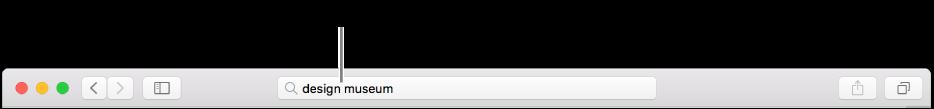 حقل البحث الذكي في Safari، حيث يمكنك إدخال اسم صفحة أو عنوان URL.