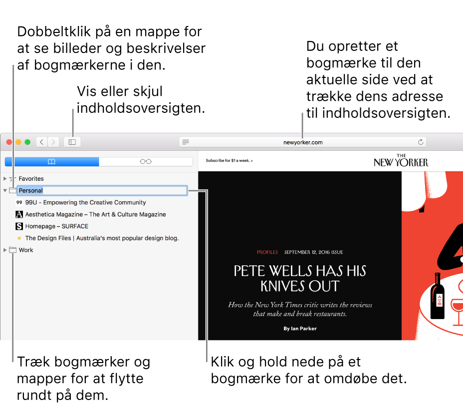 Et Safari-vindue, der viser bogmærker i indholdsoversigten, og et bogmærke, der er valgt til redigering.