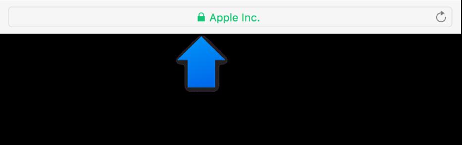 Krypteringssymbolen (ser ut som ett lås) för en webbplats med ett certifikat för utökad verifiering.