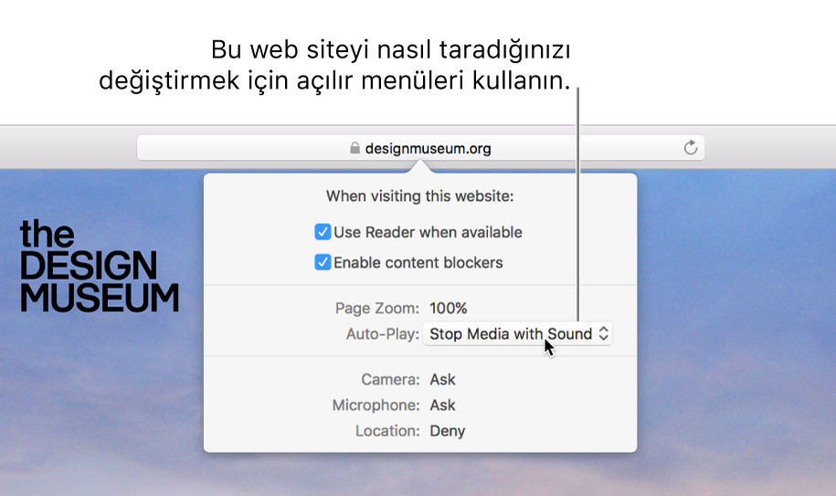 Safari > Bu Web Sitesi için Ayarlar'ı seçtiğinizde, Akıllı Arama alanının altında görünen sorgu kutusu. Kutuda, Okuyucu görüntüsünü kullanma, içerik engelleyicileri etkinleştirme ve daha pek çok şey de dahil olmak üzere, geçerli web sitesini nasıl dolaştığınızı özelleştiren seçenekler bulunur.