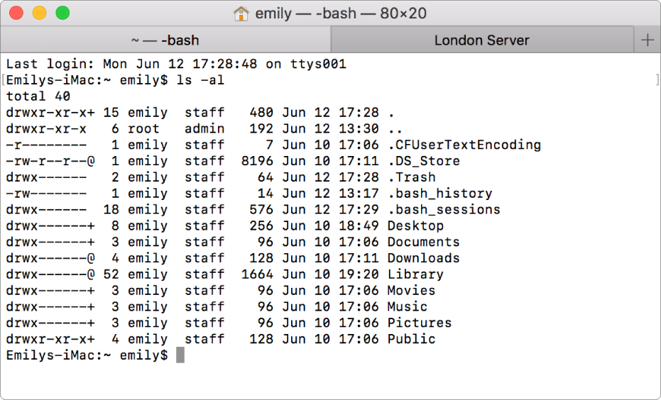 A Terminal window, showing the output of the list directory contents command, and another tab called London Server.