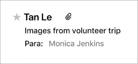 Área de cabecera del mensaje mostrando una estrella VIP a la izquierda del nombre del remitente.
