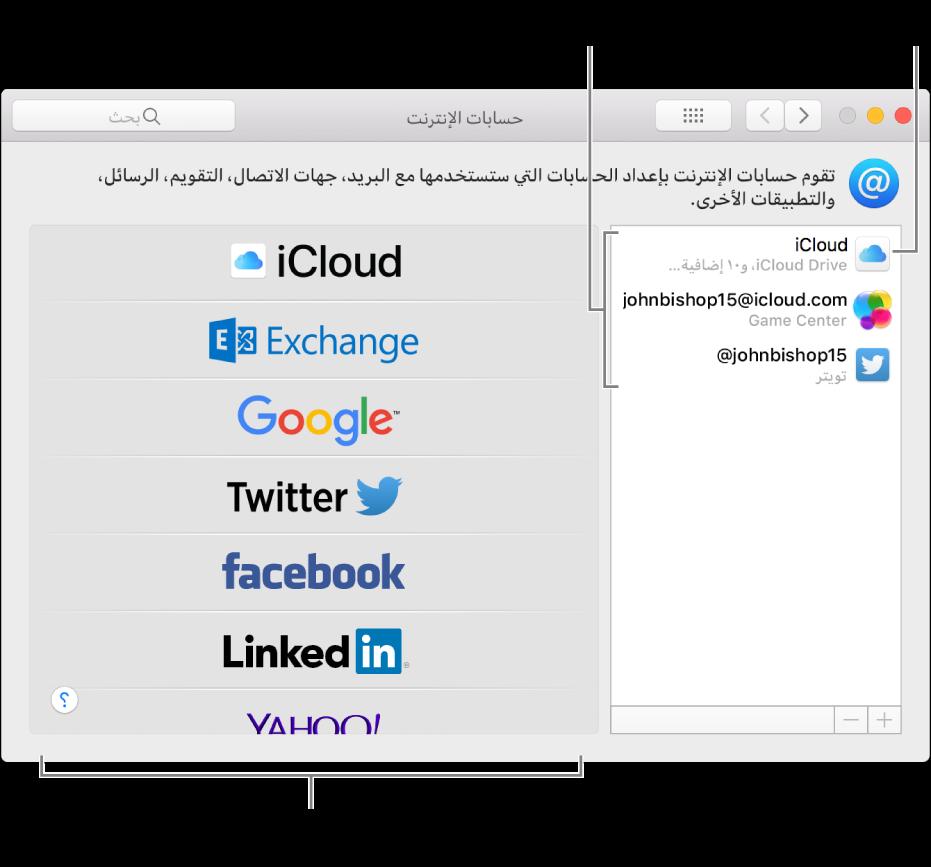 تفضيلات حسابات الإنترنت مع حسابات iCloud وتويتر المدرجة على اليمين وأنواع الحسابات المتاحة المدرجة على اليسار.