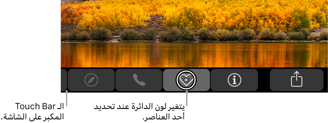 يتواجد Touch Bar الذي تم تكبيره على طول الجانب السفلي من الشاشة؛ تتغير الدائرة التي توجد حول زر عندما يتم تحديد الزر.