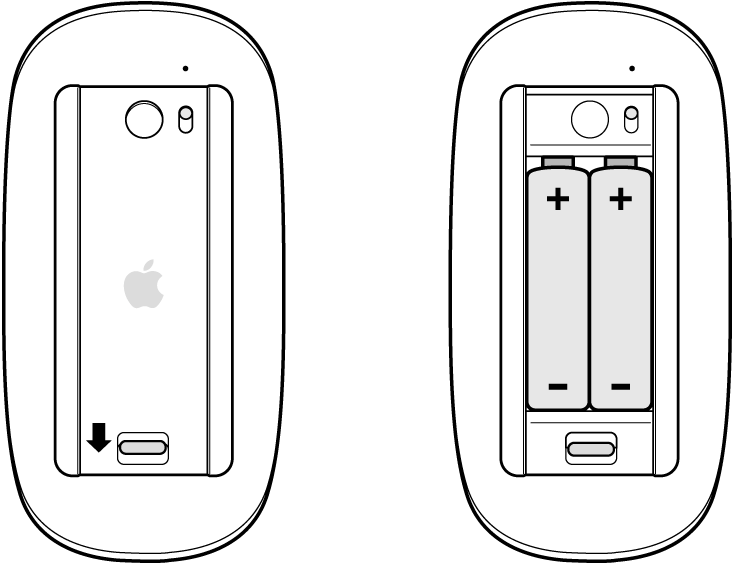 Zobrazení otevřené azavřené přihrádky myši na baterie se znázorněním správné orientace baterií vzobrazení sotevřenou přihrádkou.