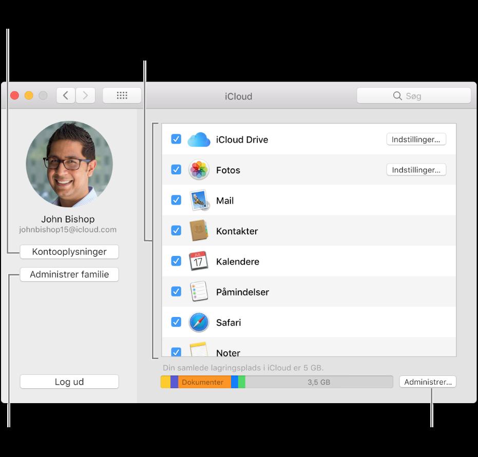 iClouds indstillinger med alle funktioner valgt.