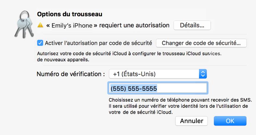 La zone de dialogue Options de TrousseauiCloud avec le nom de l'appareil demandant l'approbation et le bouton Détails à côté.