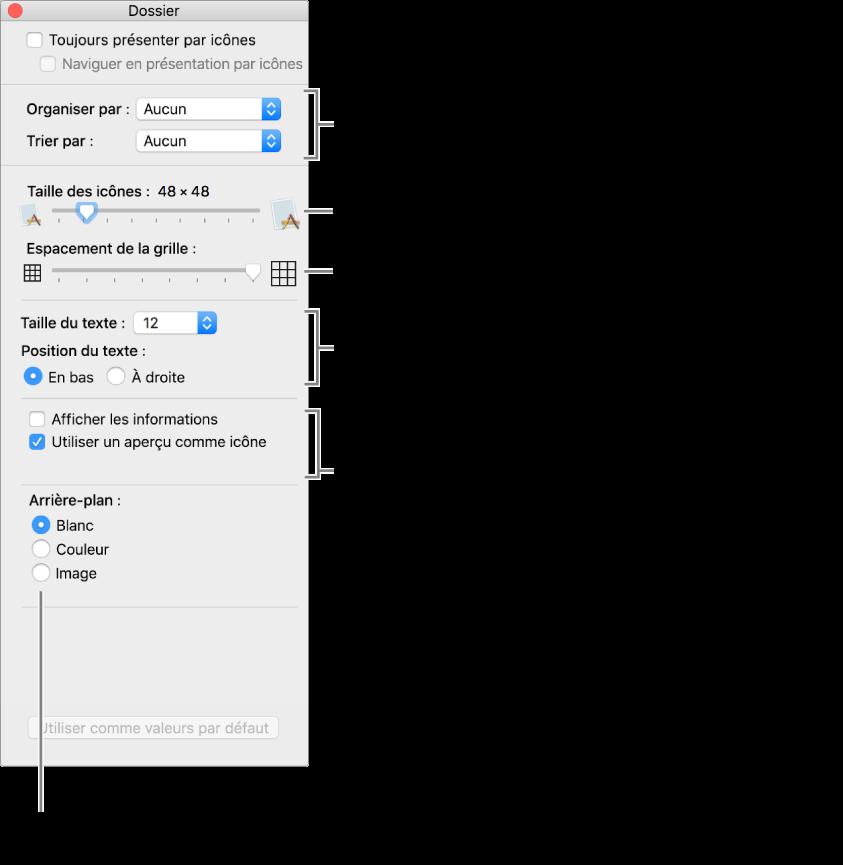 Fenêtre répertoriant les options de présentation par icônes.