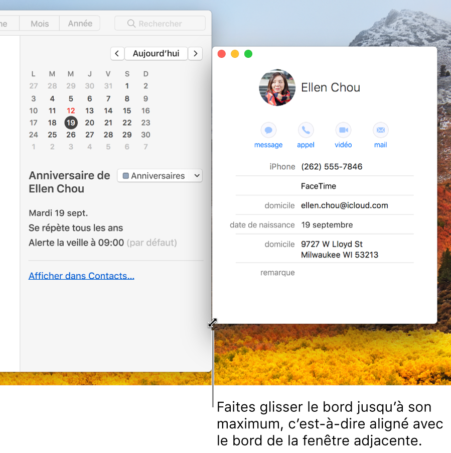 G rer des fen tres sur le bureau de votre mac assistance for Reduire fenetre mac