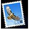 A Mail ikonja