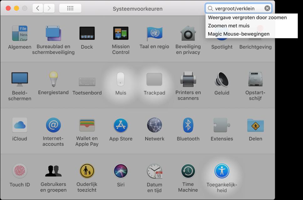 """Het venster 'Systeemvoorkeuren' met het woord """"zoom"""" in het zoekveld, daaronder een lijst met overeenkomende zoekresultaten en drie gemarkeerde voorkeursymbolen."""