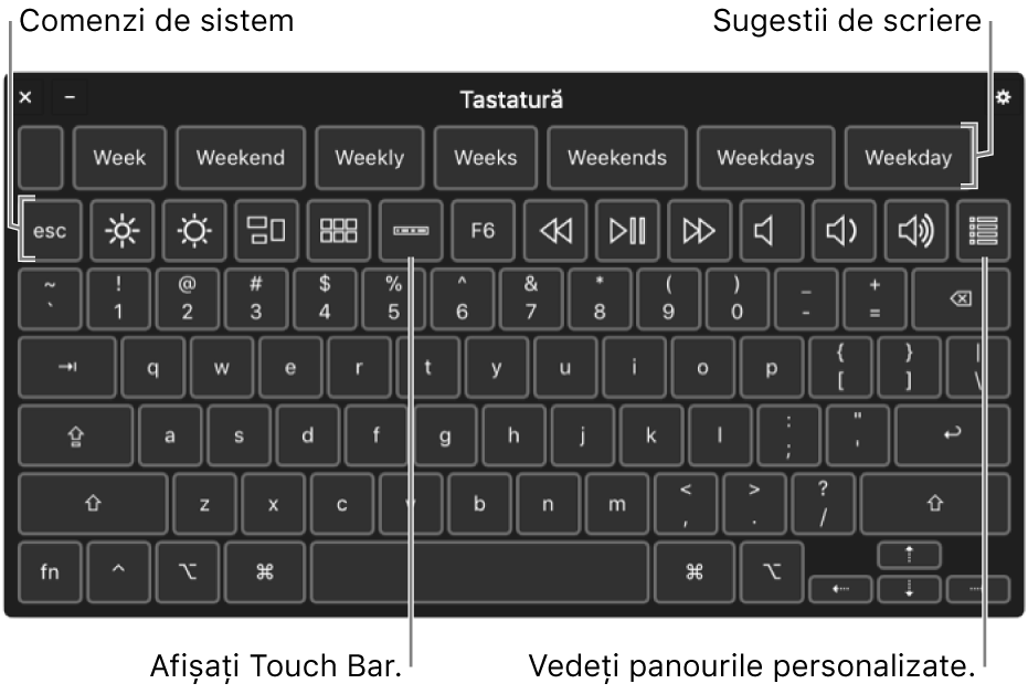 Tastatură de accesibilitate cu sugestii de tastare în partea de sus. Mai jos se află un rând de butoane pentru comenzile de sistem, pentru a realiza lucruri cum ar fi ajustarea luminozității afișajului, afișarea pe ecran a barei Touch Bar și afișarea panourilor personalizate.
