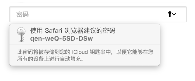 来自 Safari 浏览器建议的密码,内容是它将被存储在用户的 iCloud 钥匙串中并可在用户的设备上自动填充。