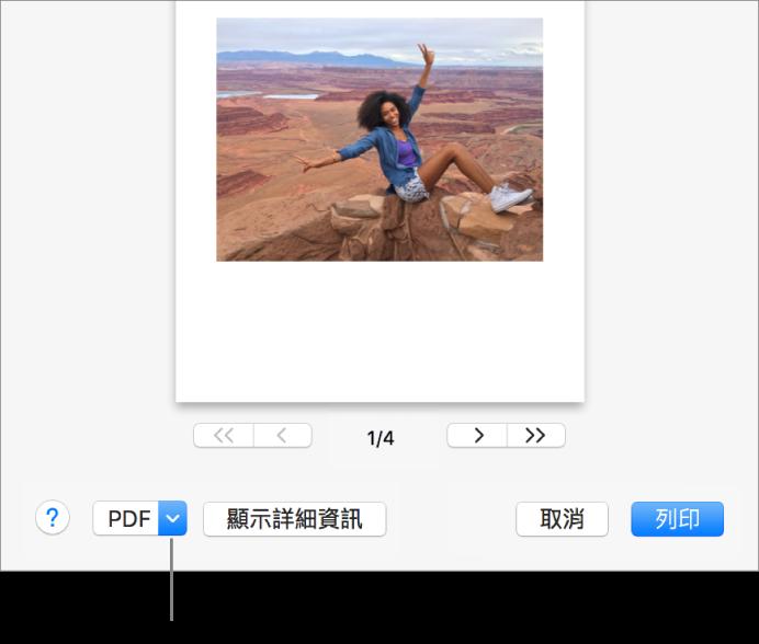 按一下 PDF 彈出式選單,然後選擇「儲存為 PDF」。
