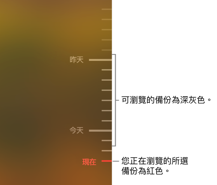 備份時間列中的灰色刻度符號。紅色的勾選符號表示您正在瀏覽的備份。