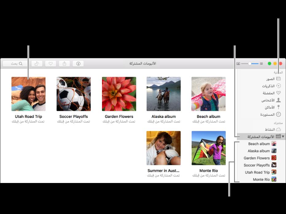 """الجزء """"مشترك"""" من نافذة تطبيق الصور، يعرض الألبومات المشتركة."""