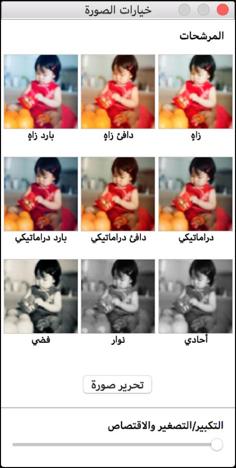 نافذة خيارات الصور مع خيارات الحدود في الجزء العلوي.