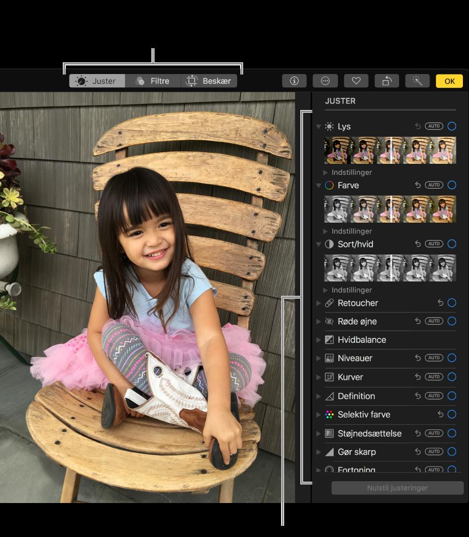 Et fotografi i redigeringsoversigt med redigeringsværktøjer til højre.