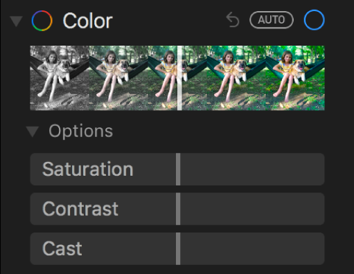 The Color area of the Adjust pane showing sliders for Saturation, Contrast, and Cast.