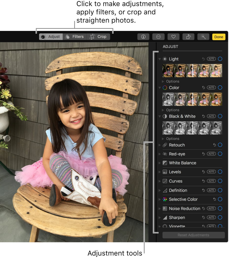 A photo in editing view with editing tools on the right.