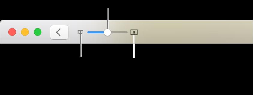 Barra de herramientas mostrando los controles del zoom.