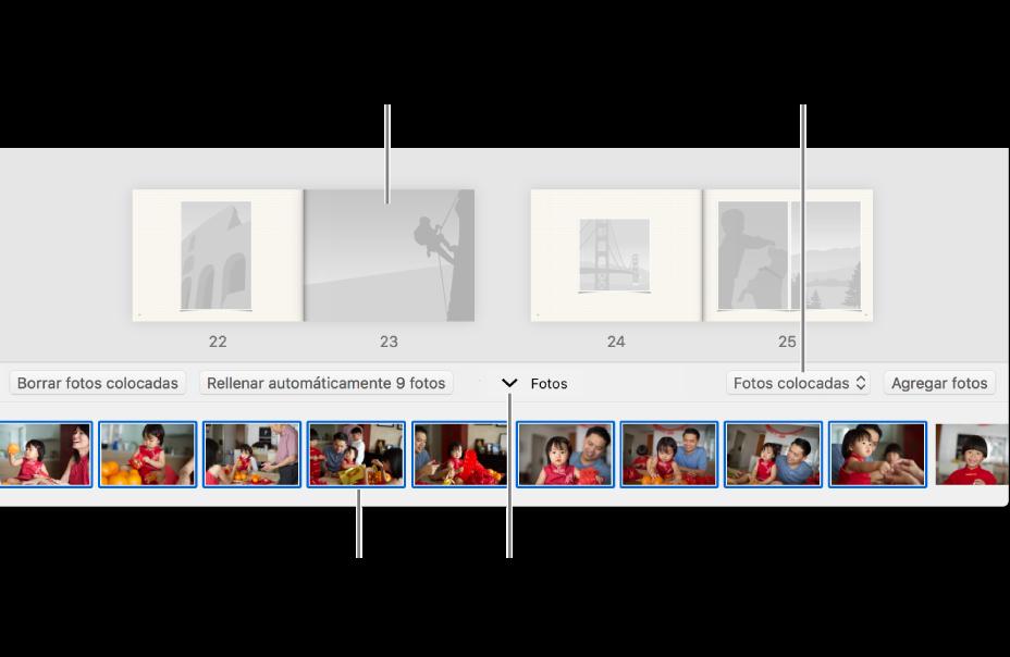 Ventana de Fotos mostrando páginas de un libro con el área Fotos en la parte inferior.