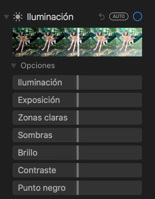 """El área Luz del panel Ajustar mostrando los reguladores de Luminosidad, Exposición, """"Zonas claras"""", Sombras, Brillo, Contraste y """"Punto negro""""."""