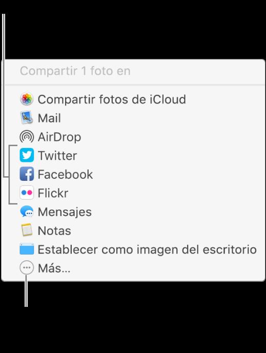 Menú Compartir mostrando extensiones de terceros tales como Flickr.