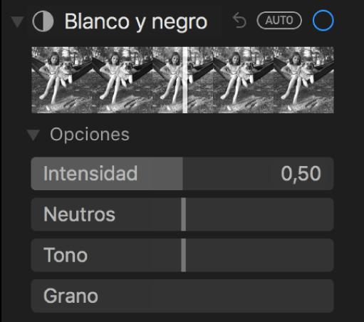 """El área """"Blanco y negro"""" del panel Ajustar con reguladores para Intensidad, Neutros, Tono y Grano."""