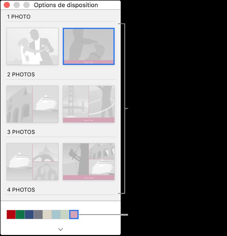 Fenêtre Options de mise en page pour une carte.