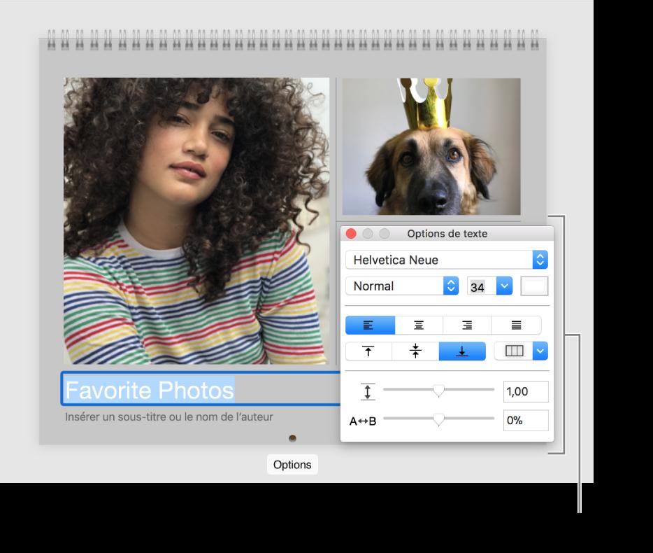 Photo surmontant une portion de texte sélectionnée et la fenêtre Options de texte à droite.