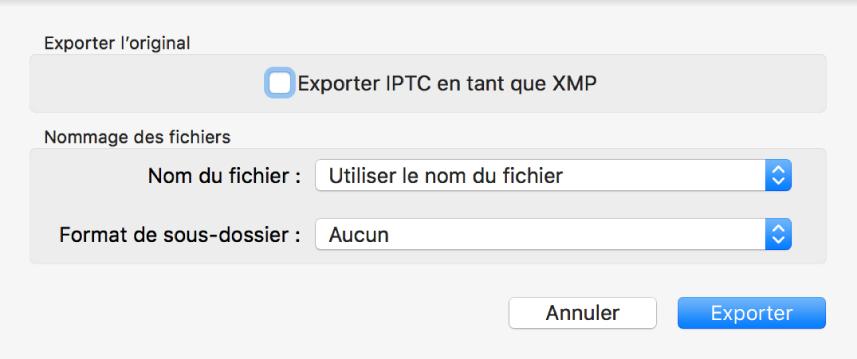 Zone de dialogue Exporter l'original présentant les options d'exportation.