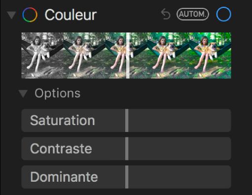 La zone Couleur de la sous-fenêtre Ajuster présentant les curseurs Saturation, Contraste et Dominante.