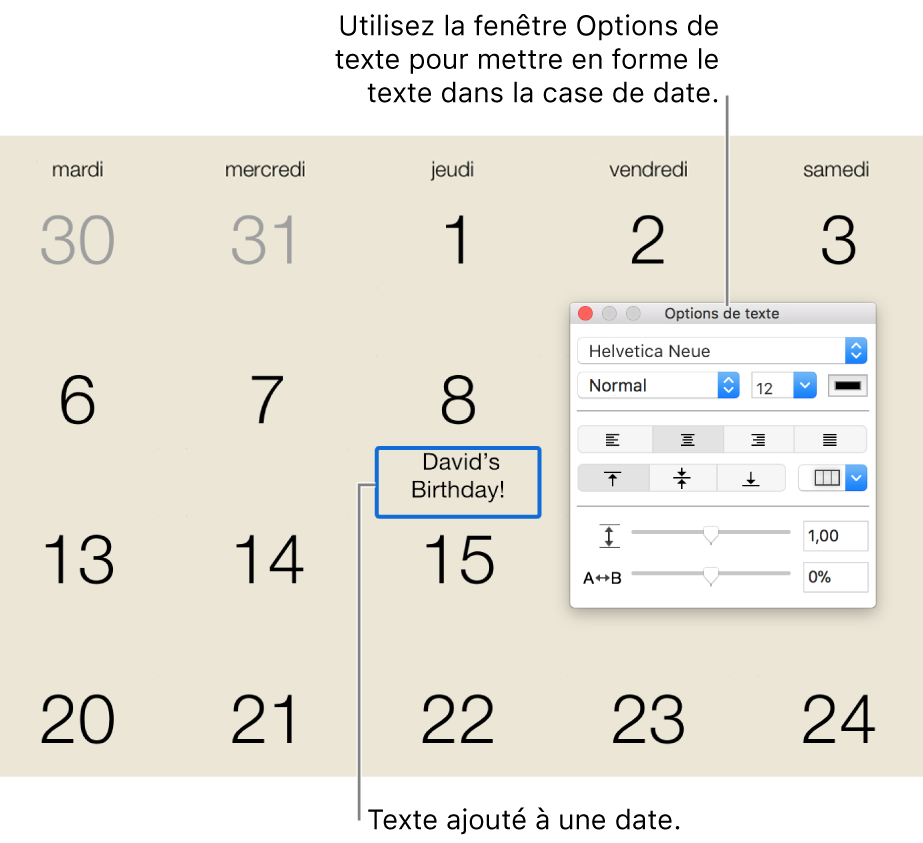 Date de calendrier à laquelle du texte a été ajouté, et la fenêtre Options de texte à droite.