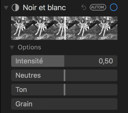 La zone Noir et blanc de la sous-fenêtre Ajuster présentant les curseurs Intensité, Neutres, Ton et Grain.