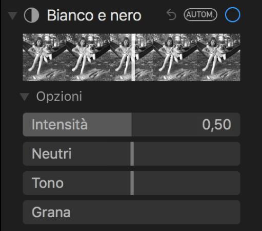 """L'area """"Bianco e nero"""" del pannello Regola con i cursori Intensità, Neutri, Tono e Grana."""