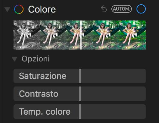 """L'area Colore del pannello Regola con i cursori Saturazione, Contrasto e """"Temp. colore""""."""
