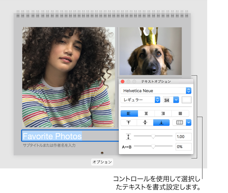 下のテキストが選択されており、右側に「テキストオプション」ウインドウが表示されている写真。