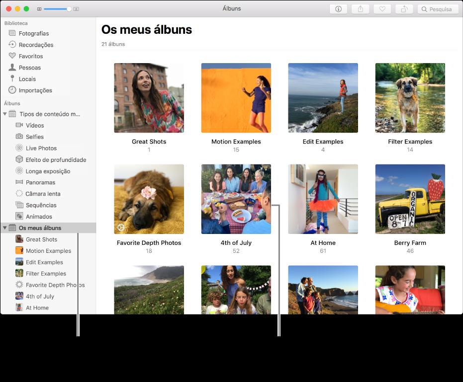 """A janela da aplicação Fotografias com a pasta """"Álbuns pessoais"""" selecionada na barra lateral e os álbuns na janela à direita."""