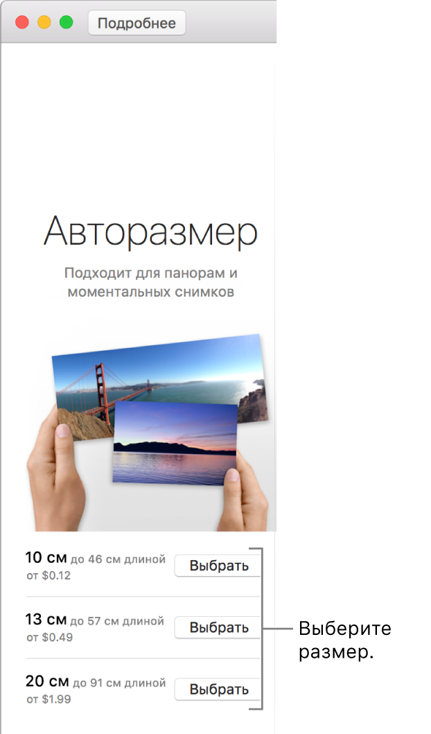 Окно с вариантами размера для формата печати «Авторазмер».