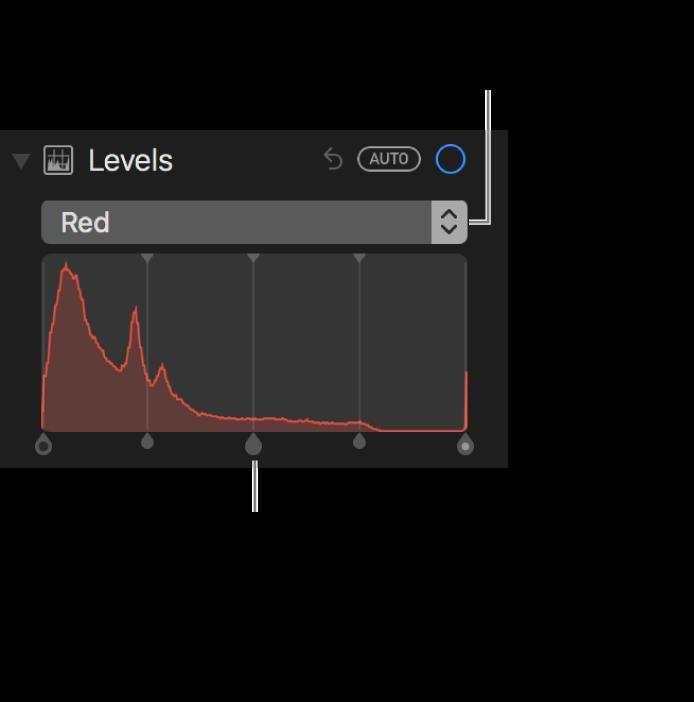 Элементы управления уровнями и гистограмма для изменения красных оттенков на фотографии.