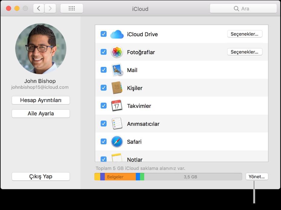 Sistem Tercihleri'nde iCloud bölümü.