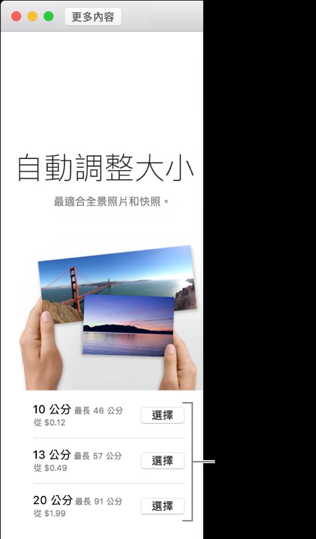 視窗顯示「自動調整大小」沖印格式的尺寸選項。