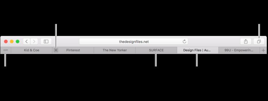 The Safari window with tabs.