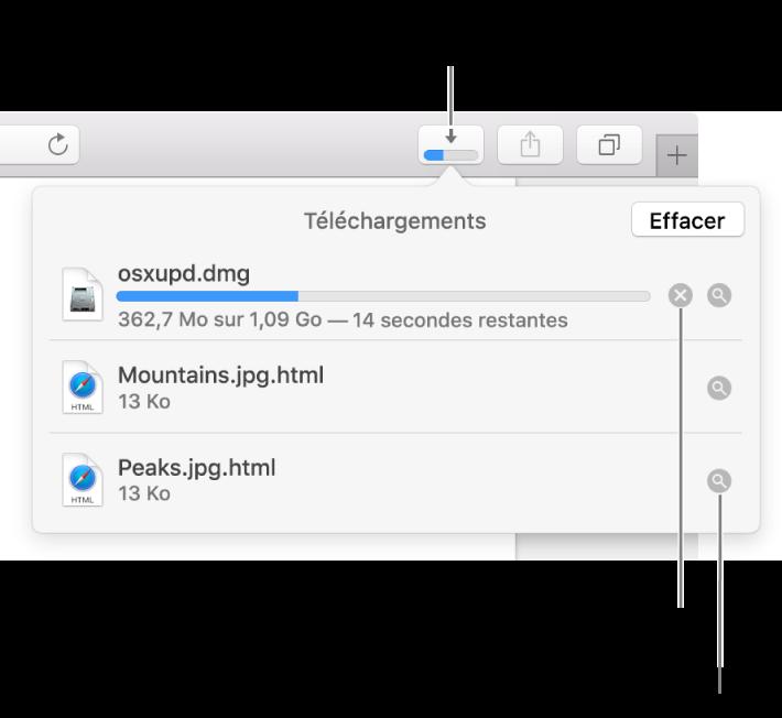 Le bouton Téléchargements de la barre d'outils, avec la liste de téléchargements sous celui-ci.